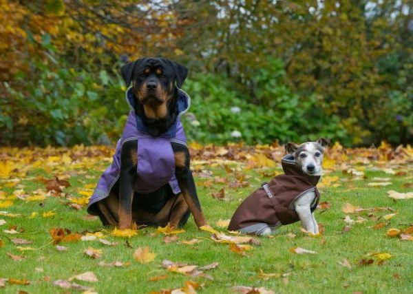 Bucas Freedom Dog Blanket light 50G