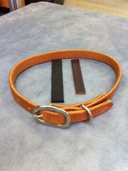 Buckaroo Leather Dog Collar Hundehalsband