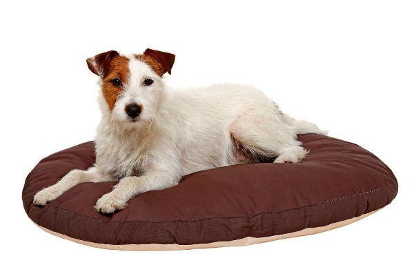 Liegekissen Doc Bed, oval, beige/braun
